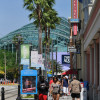 Tampa CP : Chapter 1: Livability and Choice (with Forward and Table of Contents)