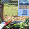 Garden Steps to host Earth Day celebration at Healthy 22nd Street