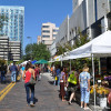Tampa CP : Chapter 2: The Livable City Vision: Strategies that get us ready for Change
