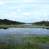 EPA approves Florida's rules to   protect waterways from nutrient pollution