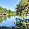 Hillsborough River conditions change with the seasons