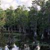 A Resilient River – A brief environmental history of the Hillsborough River
