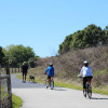 Hillsborough County needs your input on their trail system