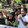 Garden Steps increases access to fresh produce in East Tampa