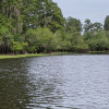 River Board calls for permanent protection of USF Forest Preserve