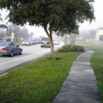 morning fog slows traffic