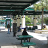 featured-transit-shelter