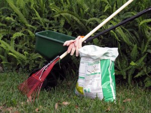 lawn tools and fertilizer