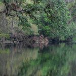 featured_hillsboroughriver