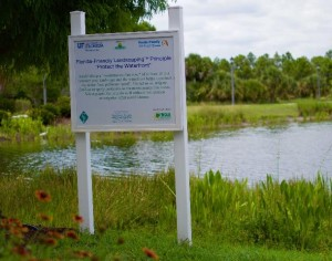 Stormwater Pond Management Project
