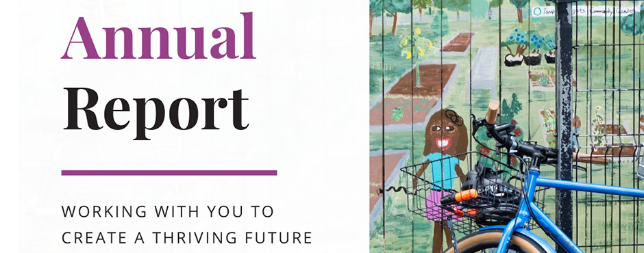 2020 annual report cover banner